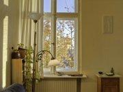lampa i roślina przed oknem